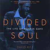 Divided Soul: The Life of Marvin Gaye audiobook download