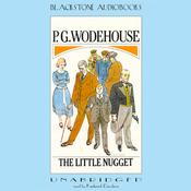 The Little Nugget (Unabridged) audiobook download