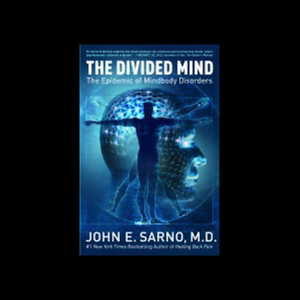 The-divided-mind-audiobook