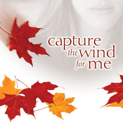 Capture the Wind for Me: Bradleyville Series, Book 3 (Unabridged) audiobook download