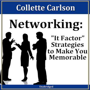 Networking-it-factor-strategies-to-make-you-memorable-30-minute-success-series-audiobook