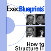How to Structure IT: Finding the Right Organizational Design: ExecBlueprint (Unabridged) audiobook download