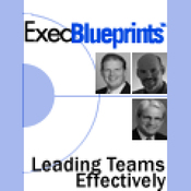 Leading Teams Effectively: How HR Can Drive Company Productivity: ExecBlueprint (Unabridged) audiobook download