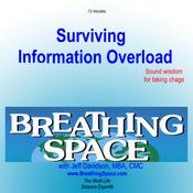 Surviving Information Overload (Unabridged) audiobook download