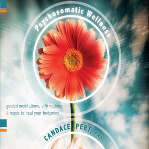 Psychosomatic-wellness-audiobook
