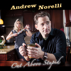 Cut-above-stupid-audiobook