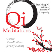 Qi Meditations: Guided Visualizations for Self-Healing audiobook download