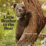 A Little Brother to the Bear (Unabridged) audiobook download