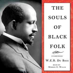 The-souls-of-black-folk-unabridged-audiobook-3
