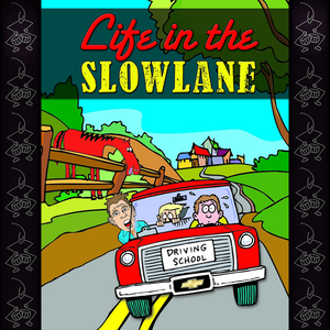 Life-in-the-slow-lane-surviving-a-tour-of-duty-in-drivers-education-unabridged-audiobook
