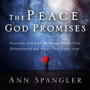 The-peace-god-promises-closing-the-gap-between-what-you-experience-and-what-you-long-for-unabridged-audiobook
