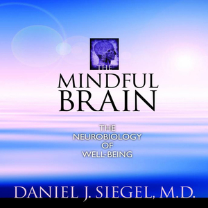 The-mindful-brain-the-neurobiology-of-well-being-audiobook