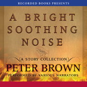 A Bright Soothing Noise (Unabridged) audiobook download