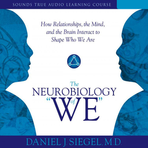 The-neurobiology-of-we-how-relationships-the-mind-and-the-brain-interact-to-shape-who-we-are-audiobook