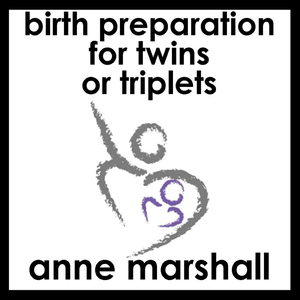 Birth-preparation-for-twins-or-triplets-easing-the-transition-from-pregnancy-to-motherhood-audiobook
