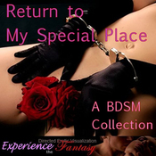 Return to My Special Place (Unabridged) audiobook download