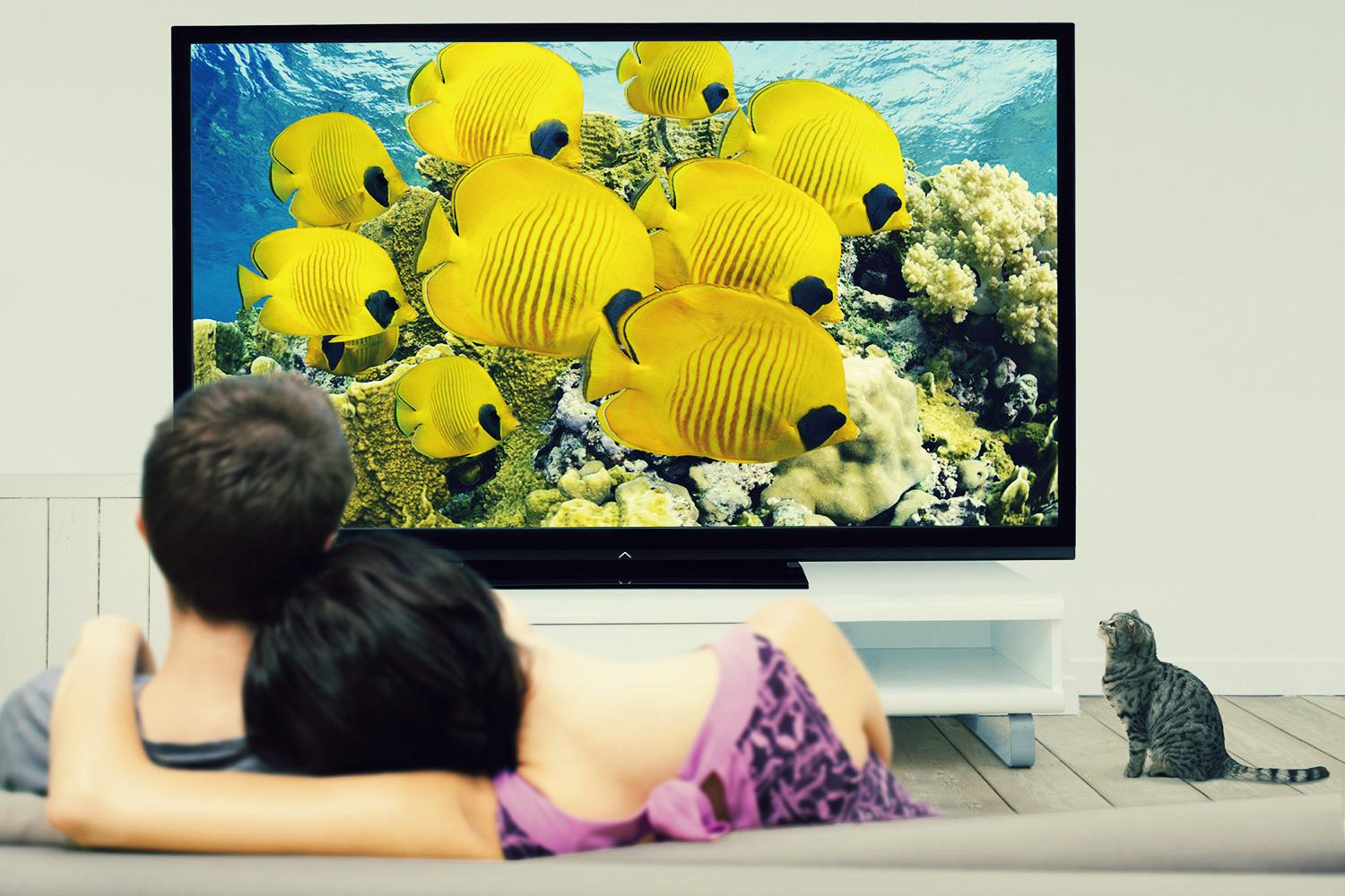 How to choose the right size TV | Digital Trends