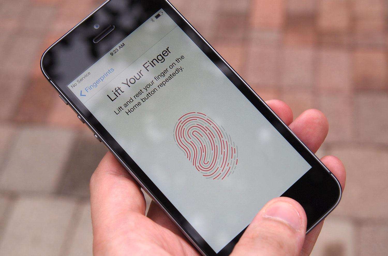 biometrics articles 2013