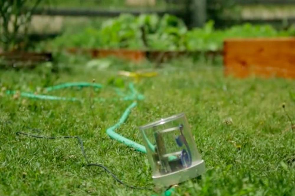 Cultivar Raincloud Is A Raspberry Pi Based Automatic
