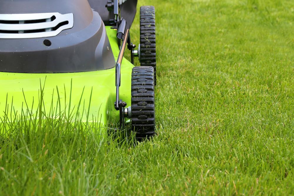 Những máy cắt cỏ sân cỏ lớn