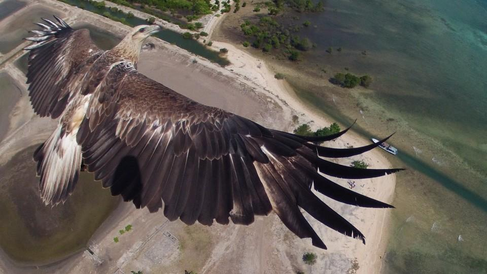 Drone Photo Contest Results Dronestagram 1