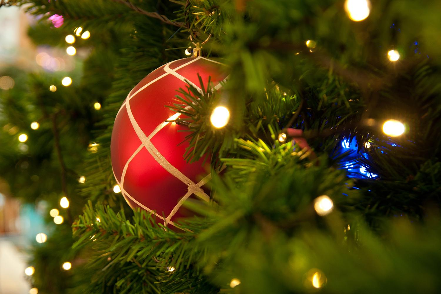 Tips on Picking a Real Live Christmas Tree | Digital Trends