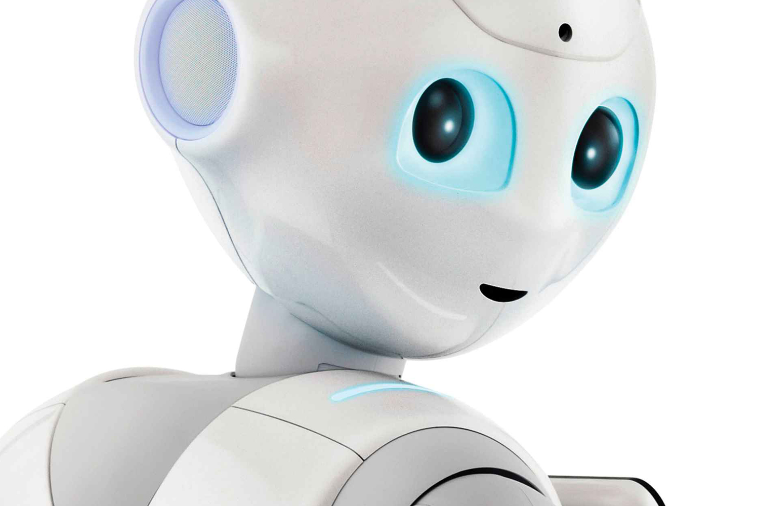 Minimalist home rules - No Sex Of Any Kind For Pepper The Robot Say Creators
