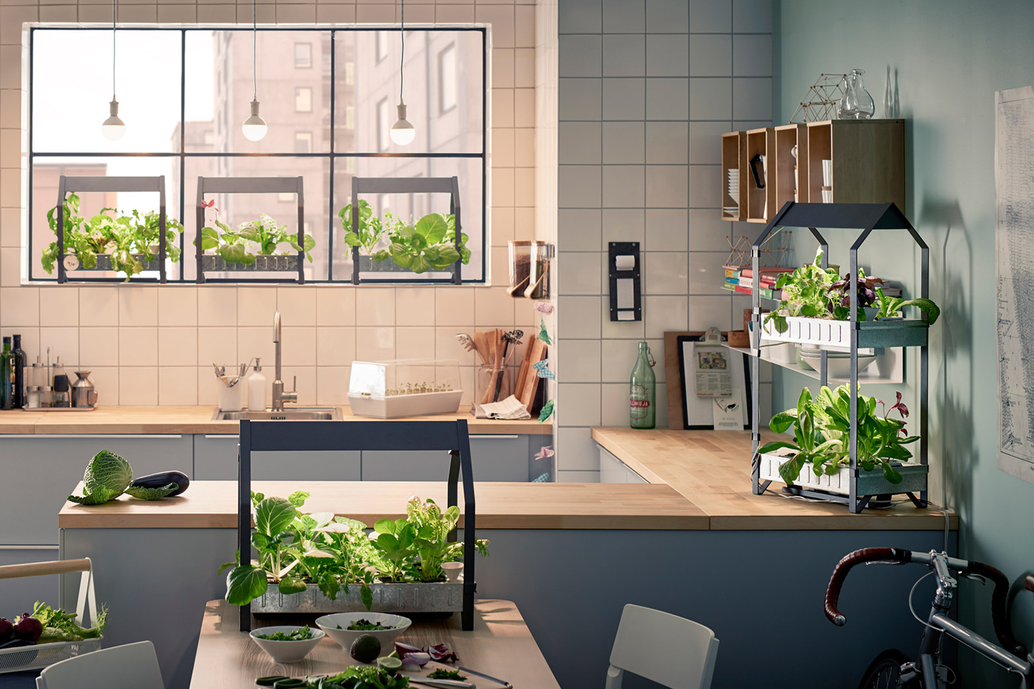 Eight devices to help you grow a garden indoors digital for Indoor gardening machine