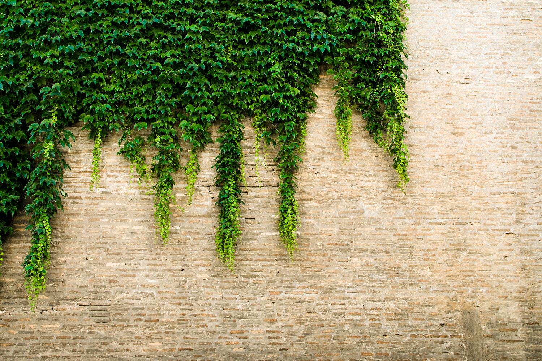 living architecture smart bricks