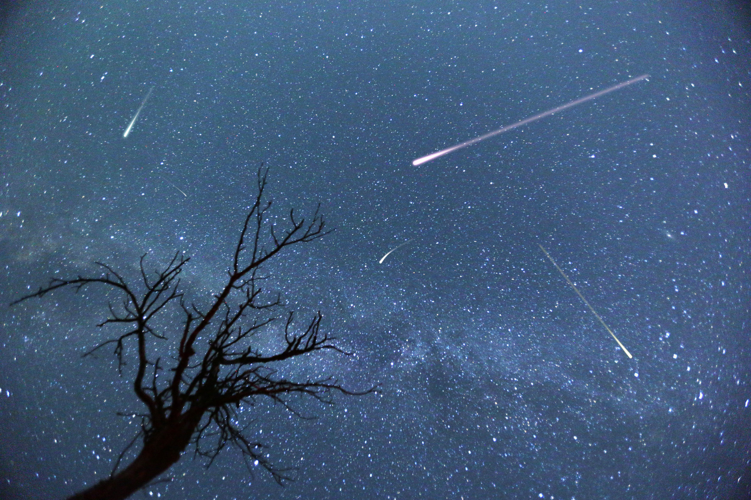 Jupiter's Gravitational Pull: Why Perseid Meteor Shower Be Majestic This Year?