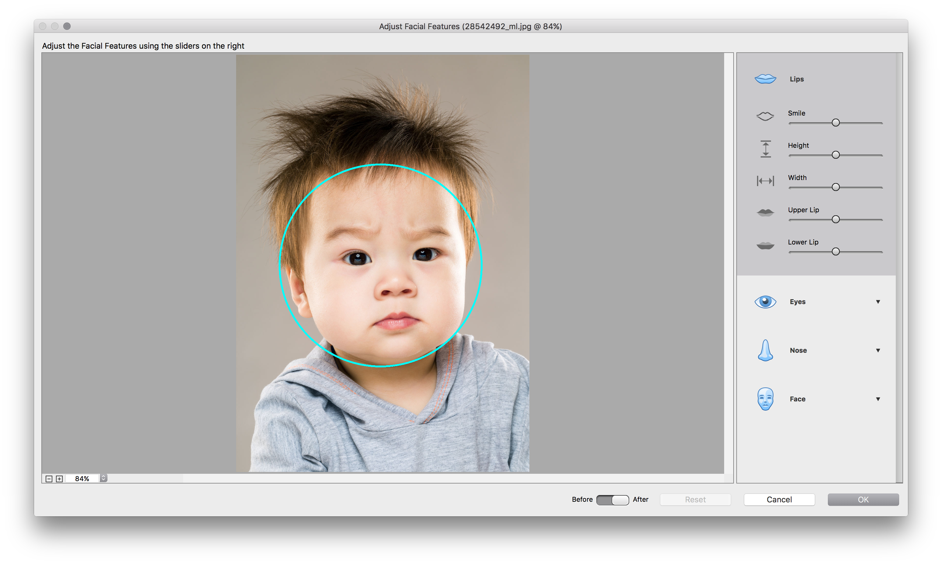 Phần mềm Adobe Photoshop Elements 2018
