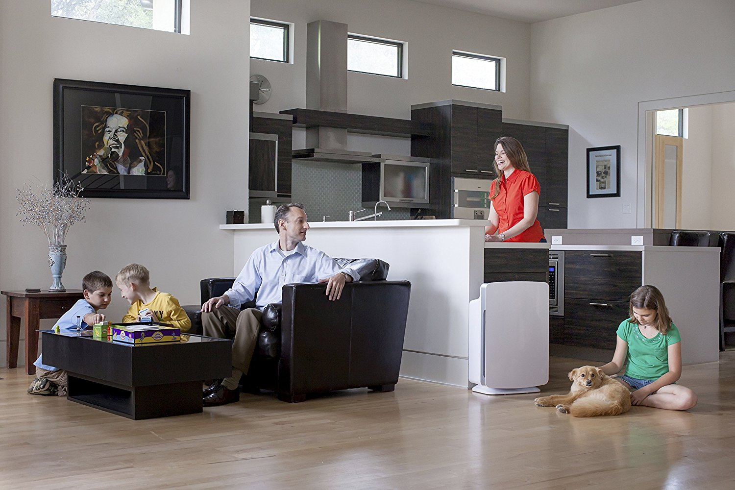 best air purifiers mrraw aal sl. The 5 Best Air Purifiers of 2016   Digital Trends