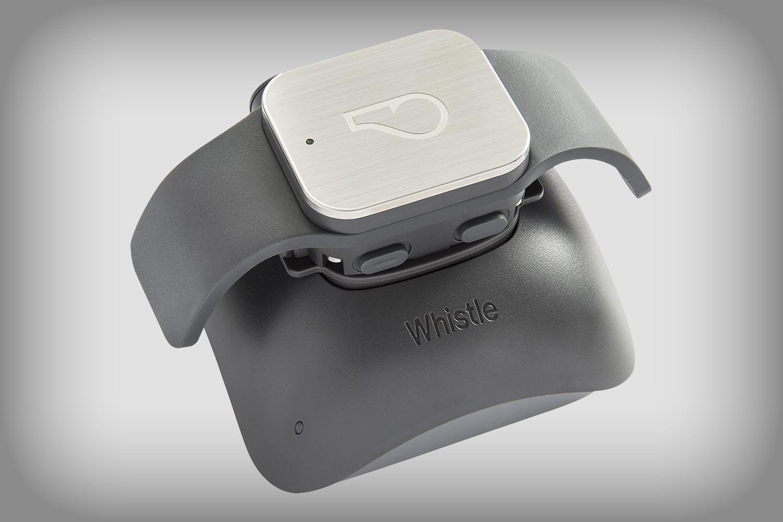 Whistle Gps Pet Tracker Deal Cvd