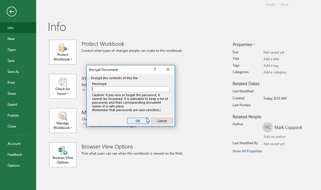 protecting excel spreadsheet with password