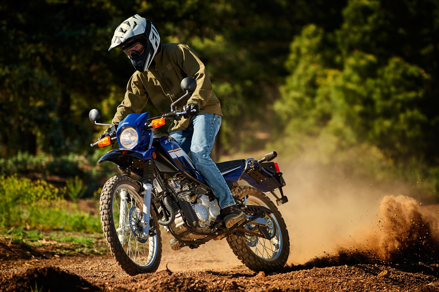 The best dual sport motorcycles pictures specs for Yamaha sport motorcycles