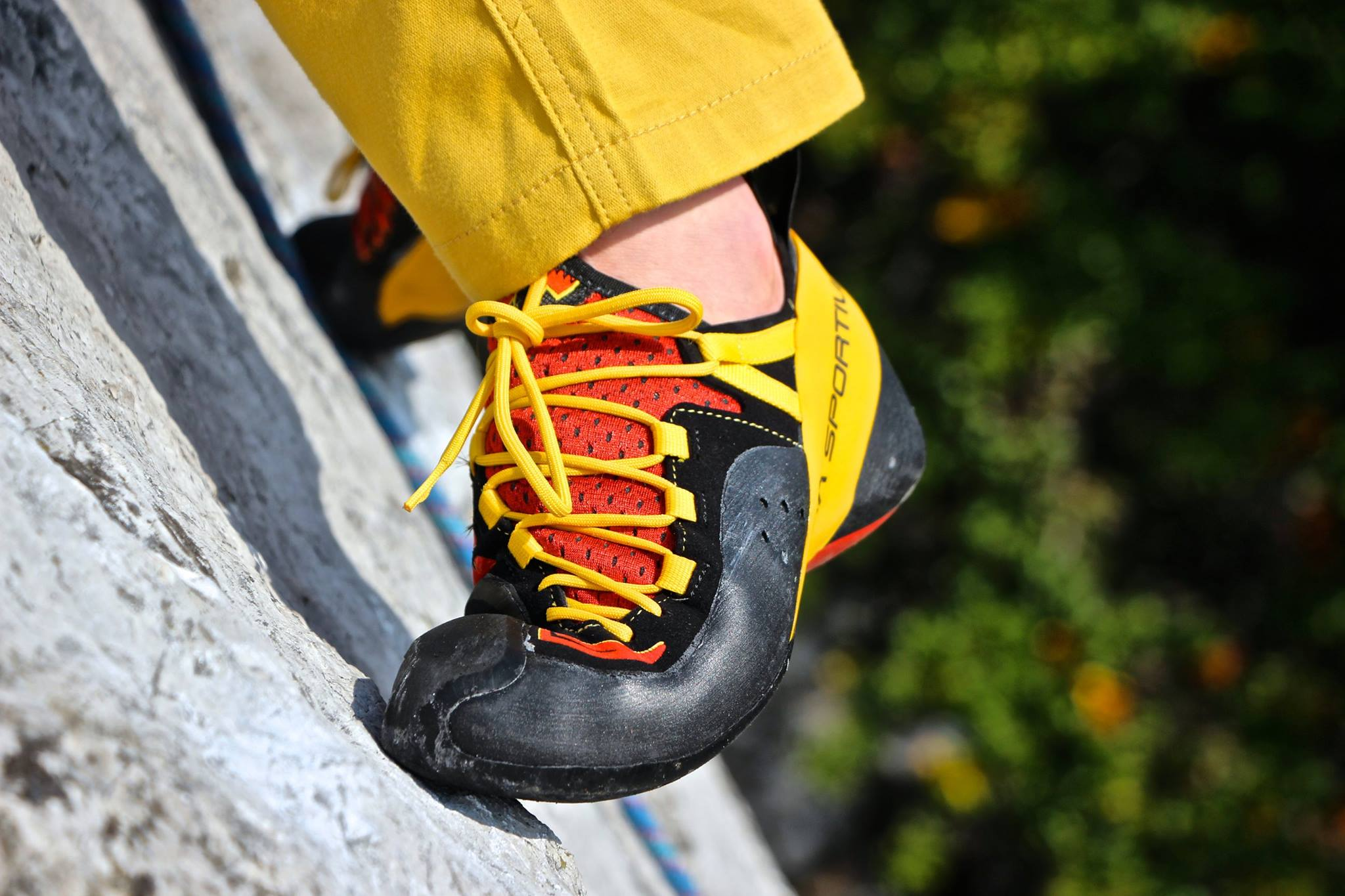 the best climbing shoes for indoor and outdoor rock