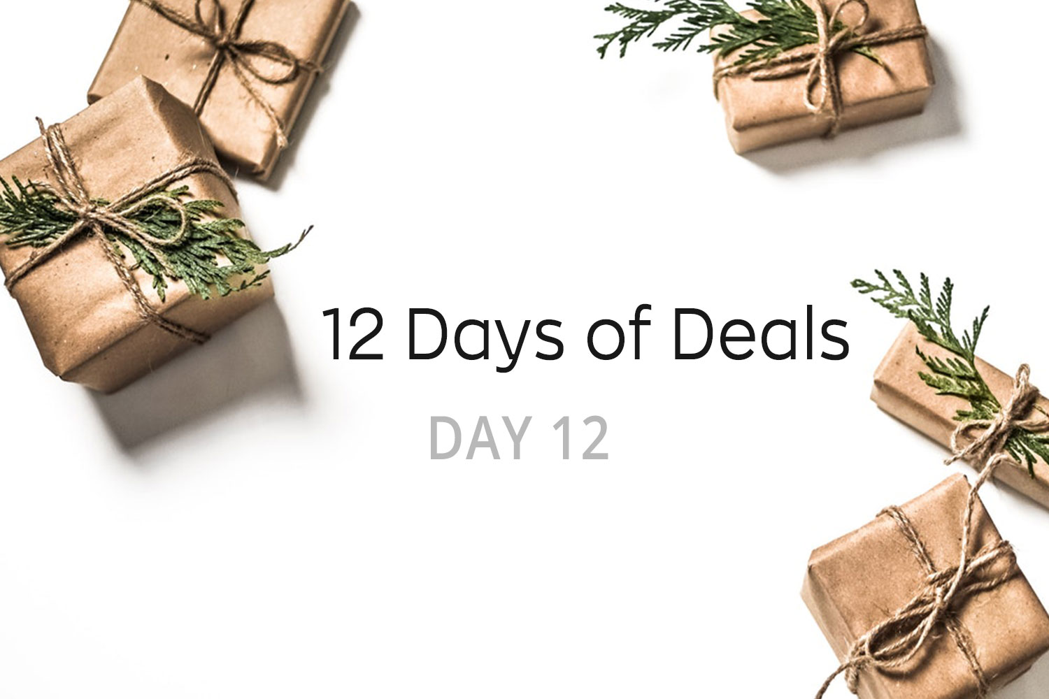 Nlc 12 deals of christmas