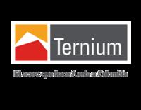 Logo ternium
