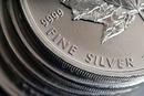 Chesapeake Bay Rare Coins