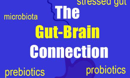 Your Second Brain: Gut Microbiota