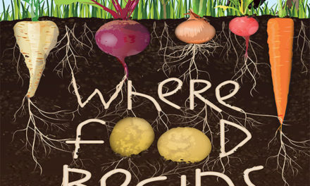 Soil: It is much more than Dirt