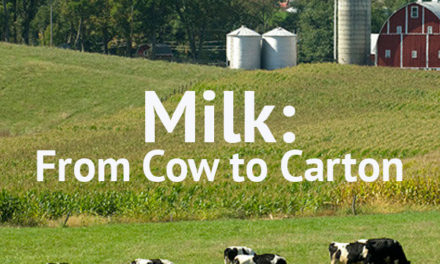 A Journey from Dirt-to-Dinner: Milk