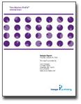 Time Mastery Profile Facilitator Report - EPIC, Time Mastery Assessment, Time Management Tool, Time Management Training
