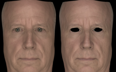Single-Shot High-Quality Facial Geometry and Skin Appearance Capture