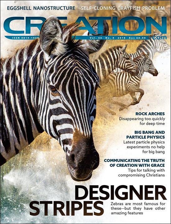 Creation Magazine Volume 40 Issue 4 Cover