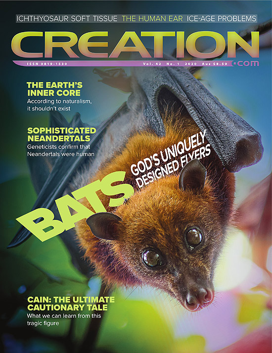 Creation Magazine Volume 42 Issue 1 Cover