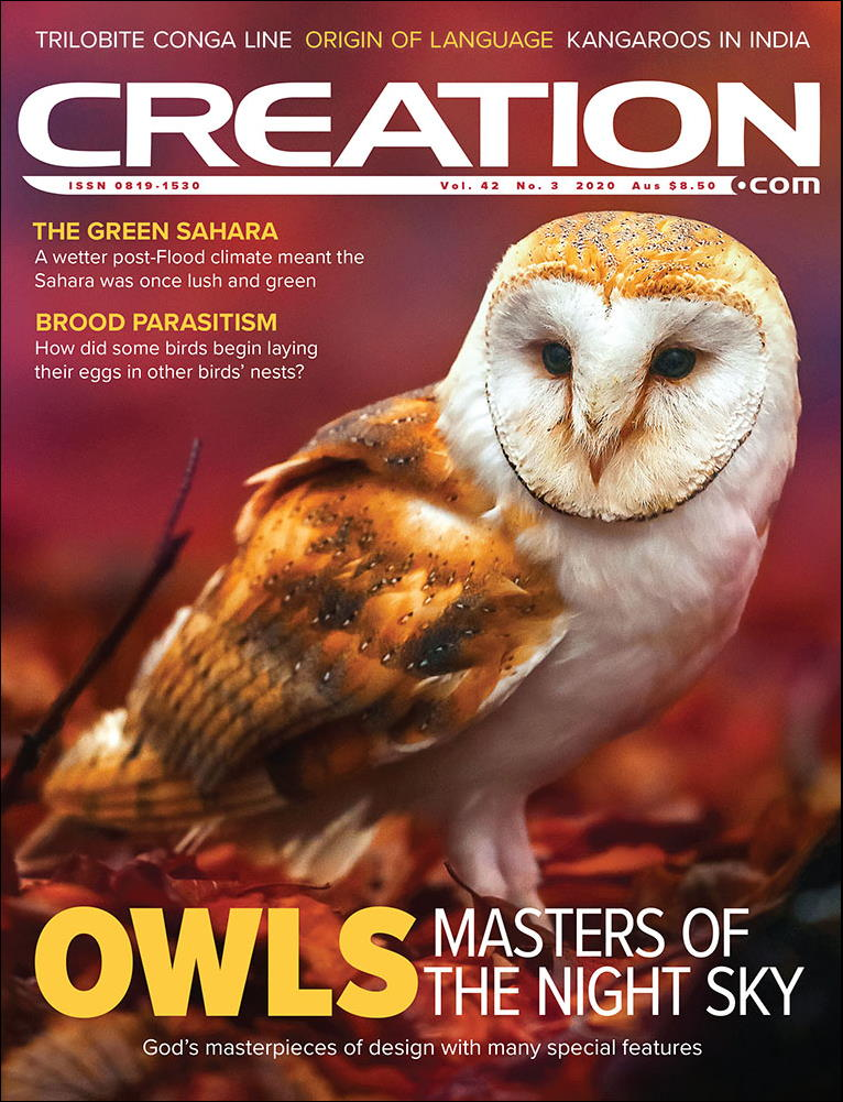 Creation Magazine Volume 42 Issue 3 Cover