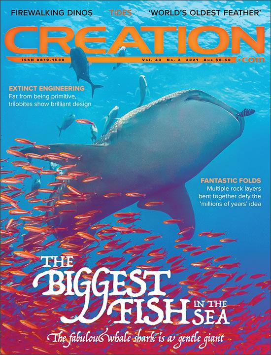 Creation Magazine Volume 43 Issue 2 Cover