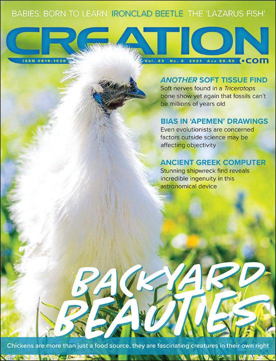 Creation Magazine Volume 43 Issue 4 Cover