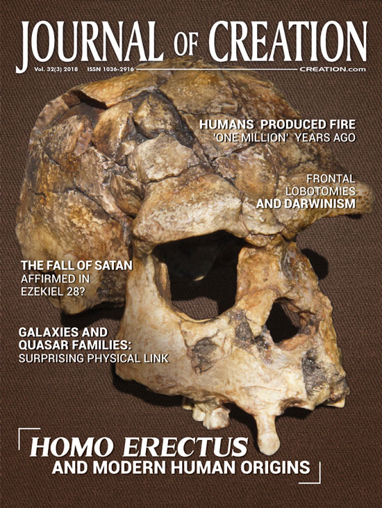 Journal of Creation Volume 32(3) Cover
